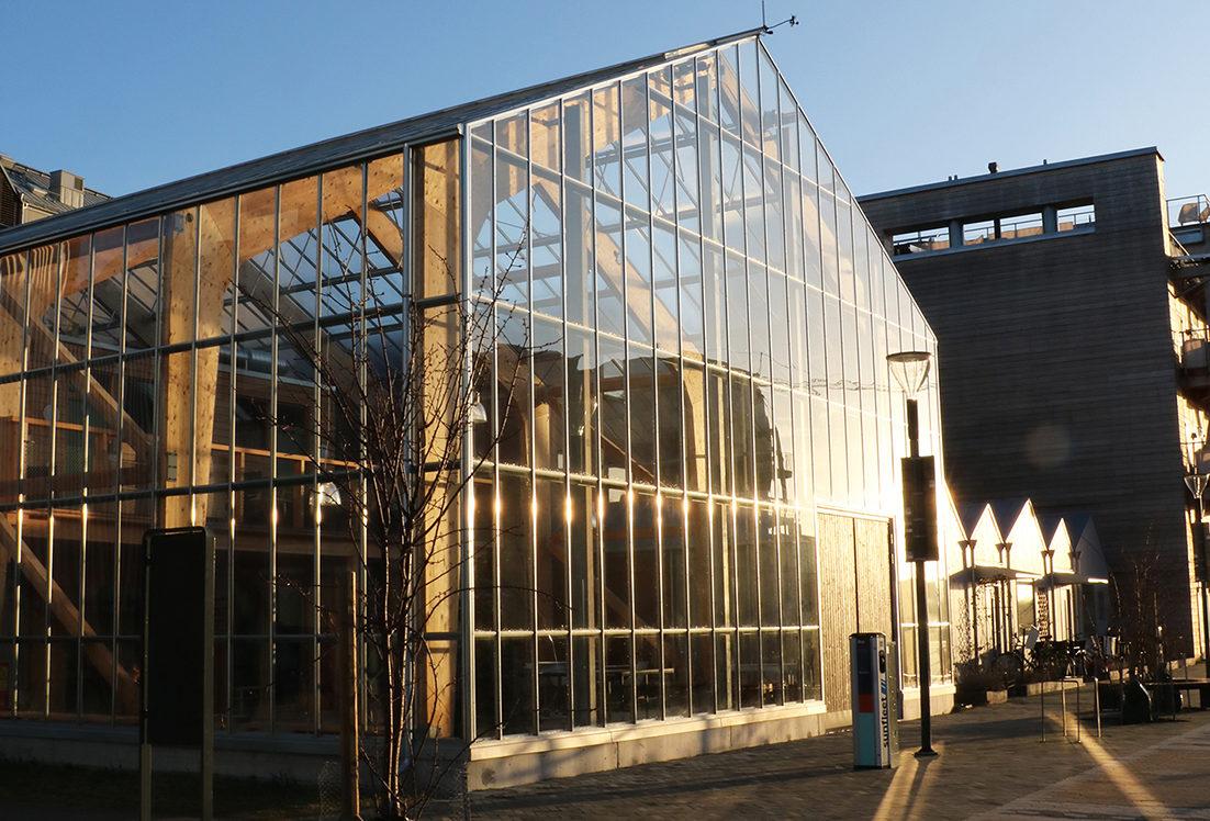 Glashuset är felleshus för kvarteret Integralen som Alexandra Tsigotsides bor i och här finns såväl odlingar som gästrum och samlingslokal.