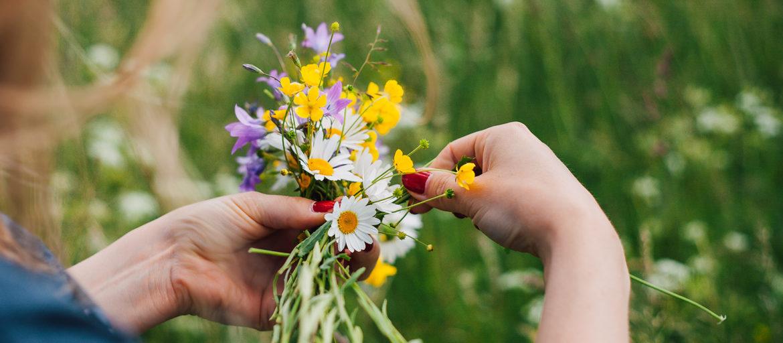 Någon håller i en bukett med blommor