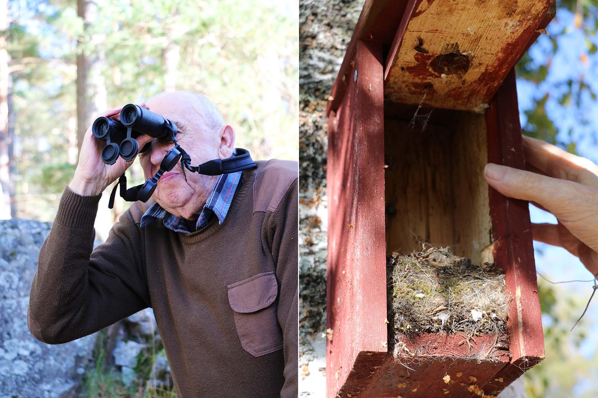 Varje år huserar mellan 1000 och 1100 fåglar i Knut-Eriks holkar.