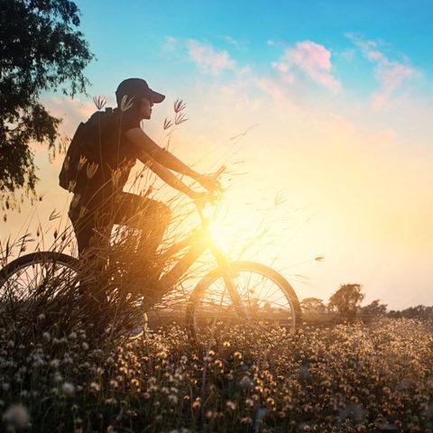 heimstaden_man_cykel_eftermiddagssol