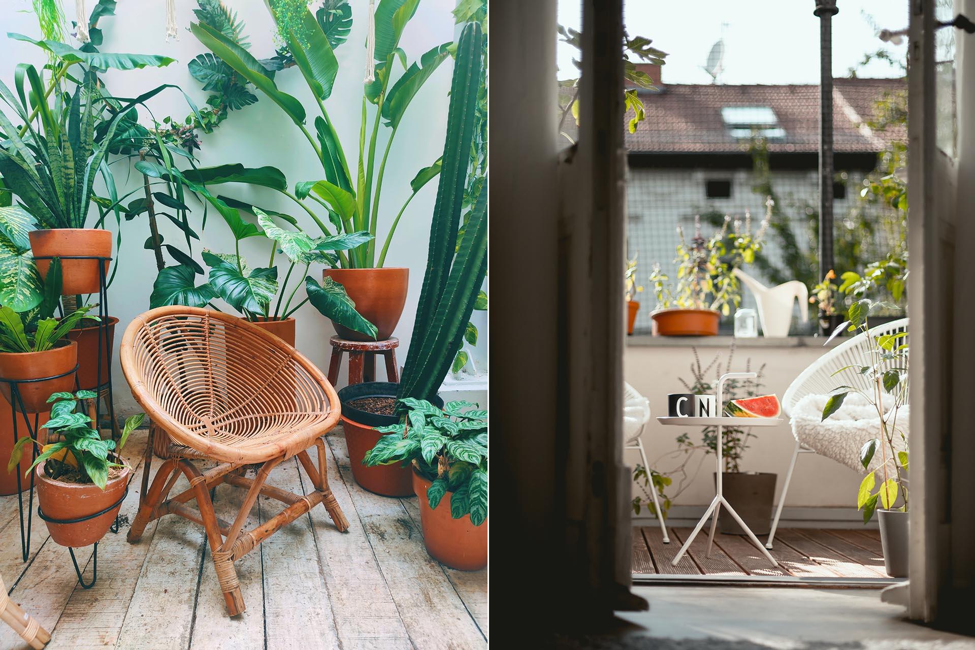 Att plantera växter och blommor på vår kära balkong är ett underbart sätt att få utlopp för våra gröna odlingsdrömmar. Vad drömmer du om?