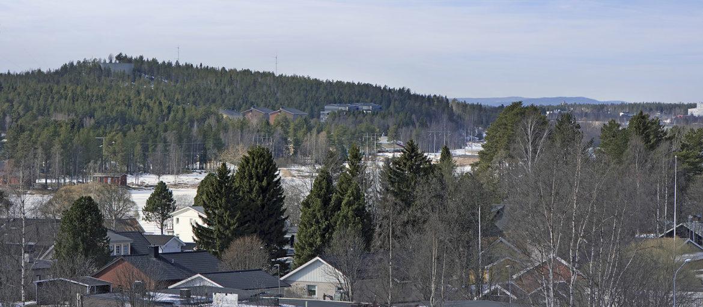 Vy över Luleå och Kronandalen