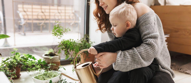 Seks tips for å lykkes med hjemmedyrking