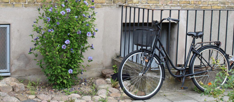 Slik rengjør du sykkelen